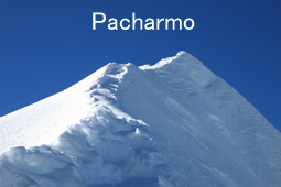Pacharmo
