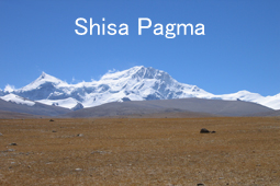 Shisa-Pagma